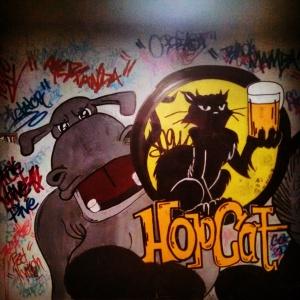 145 Hopcat 3