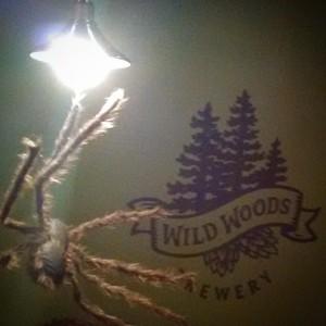 248 WildWoods 3